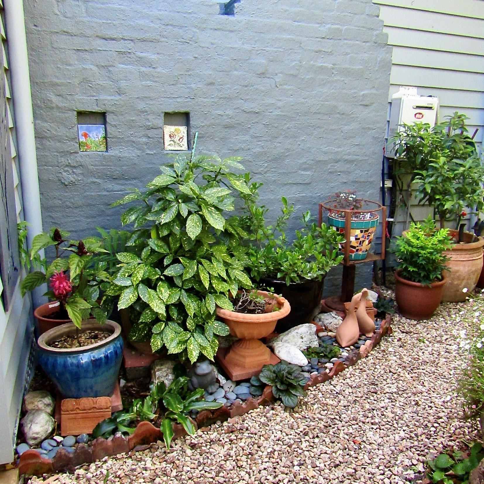 In Your Local Garden with Gen Heyne Gardens: A viral retreat