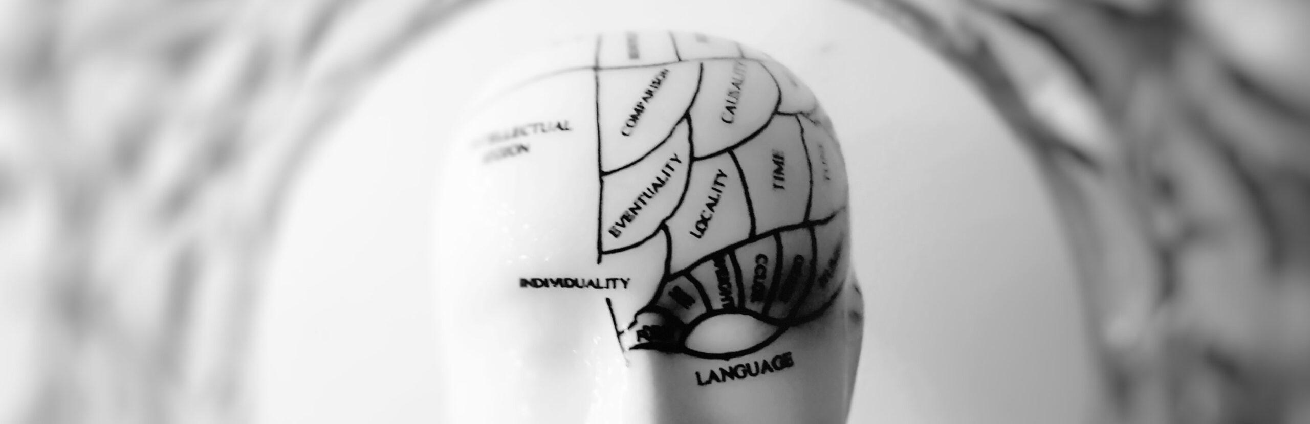 Rewiring neural pathways part of healthy ageing